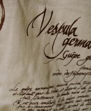 vespula_ecru-detail2